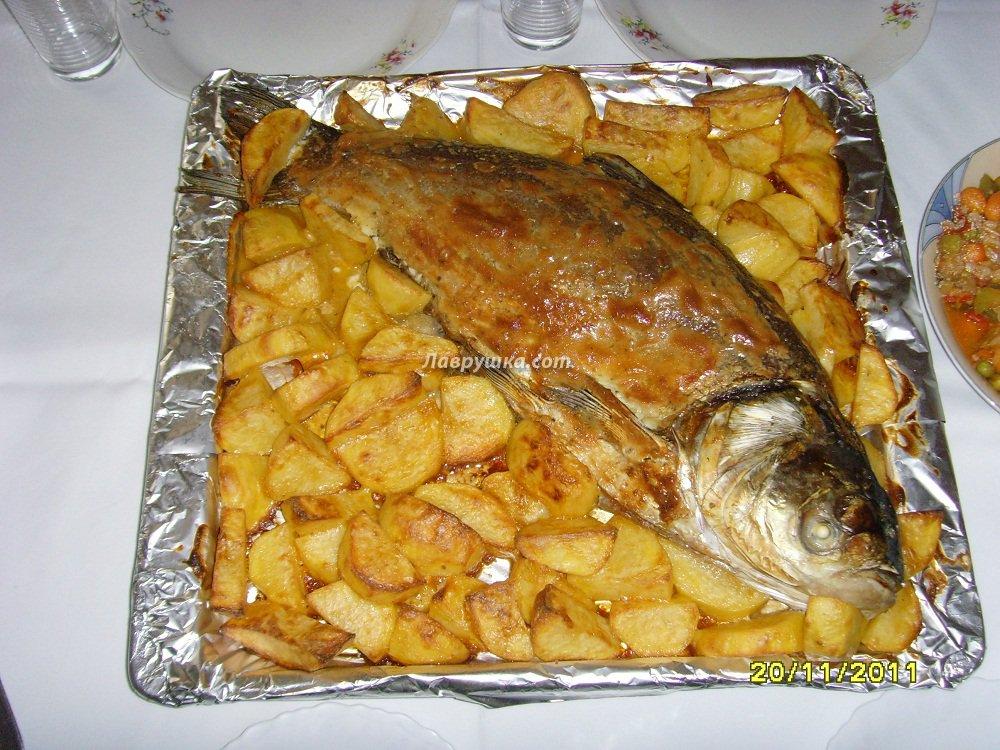 толстолоб в духовке в фольге рецепты с фото